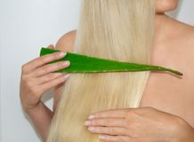 A blonde woman applied aloe vera to her hair. Natural Cosmetics for hair. stock photos