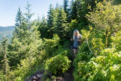 Blonde woman hiker hikes downhill on an Oregon trail in Mt Hood. A blonde female hiker makes her way through the forest on the Mirror Lake Trail in the Mount royalty free stock photos