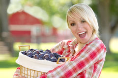 A Blonde Woman Holding a Basket of Plums. A young blonde woman holding a basket of plums stock photography