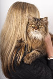Blonde woman holding brown tabby c Royalty Free Stock Photos