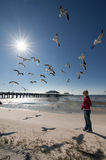 Blonde woman looking seagulls. Of mississippi beach Stock Photo