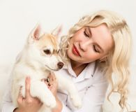 Blonde woman with puppy husky dog on a white sofa. girl playing with a dog Stock Photography