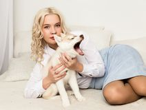 Blonde woman with puppy husky dog on a white sofa. girl playing with a dog.  Stock Photos