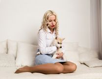 Blonde woman sitting on a sofa with puppy husky dog. girl playing with a dog Royalty Free Stock Photos