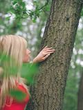 Woman in Forest royalty free stock photography