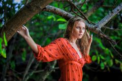 Blonde Woman in Red Wet Dress at rainig day Stock Photo