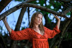Blonde Woman in Red Wet Dress at rainig day Stock Photography