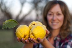 Blonde woman with three quinces in her hand. royalty free stock photography