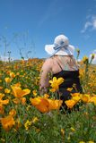 Blonde woman wearing a straw bonnet hat looks out to the field of poppy wildflowers during the superbloom royalty free stock image