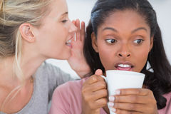 Blonde woman whispering secret to her friend Stock Image
