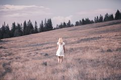 Blonde woman in white dress on countryside meadow stock image