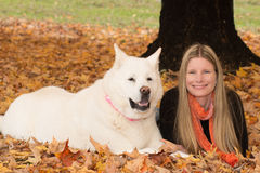 Blonde Women and Dog Lying in Autumn Leaves. Blonde woman in thirties lying in the autumn leaves with her large white akita dog. Both are staring into the camera Royalty Free Stock Photography