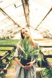 Blonde in a greenhouse holding a pot of ferns stock image