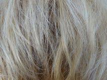 Blondehaar als Achtergrond Royalty-vrije Stock Fotografie