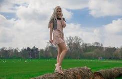 Blondemeisje in het park stock foto's