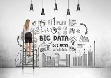 Blondeonderneemster op ladder, grote gegevens royalty-vrije stock foto's