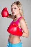 Blonder Boxer Lizenzfreie Stockbilder