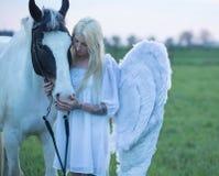 Blonder Engel, der um das Pferd sich kümmert Stockbilder
