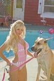 Blonder FrauPoolside mit einem großen Dänen Stockfoto