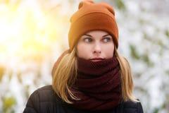 Blonder Hintergrund der Winterlandschaft Lizenzfreie Stockfotografie