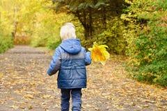 Blonder Junge, der durch den Herbstpark geht Rückseitige Ansicht Stockfotografie