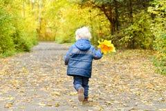 Blonder Junge, der durch den Herbstpark läuft Rückseitige Ansicht Stockfotografie