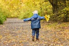 Blonder Junge, der durch den Herbstpark mit den offenen Armen läuft Rückseitige Ansicht Stockbild