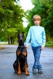 Blonder Junge, der mit dem Hund oder dem Dobermann herein aufwirft Stockfotos