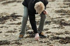 Blonder Junge, der Stein auf Strand aufhebt Stockfotos