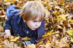 Blonder Junge des Kleinkindes mit blauen Augen legt auf Bett Herbst gefallenen Le Lizenzfreies Stockbild