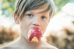 Blonder Junge liegt auf Heuhintergrund und isst einen Apfel Verkauf f?r gesamte Herbstkollektion, unglaubliche Rabatte und stockfotografie