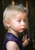 Blonder Junge mit blauen Augen Stockbild