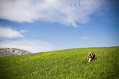 Blonder Messwert auf Gras Lizenzfreies Stockbild