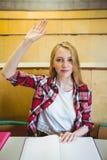 Blonder Student, der Hand während der Klasse anhebt Stockfotos
