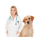 Blonder Tierarzt mit netten Labrador retriever Lizenzfreies Stockfoto