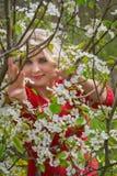 Blonder und blühender Apfelbaum Stockfotos