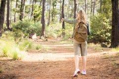 Blonder Wanderer, der auf Landschaft zeigt Stockbild