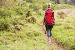 Blonder Wanderer, der mit Rucksack wandert Lizenzfreies Stockfoto