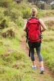 Blonder Wanderer, der mit Rucksack wandert Lizenzfreie Stockfotos