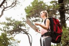 Blonder Wanderer mit der Karte, die nach Weg sucht Stockfotografie