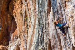 Blonder weiblicher Bergsteiger-steigender vertikaler orange Felsen Stockbild