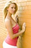 Blondes Art- und Weisebaumuster Stockfotos