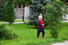 Blondes Baby im Herbststraßenpark Stockbilder