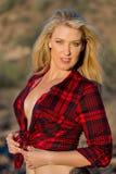 Blondes Baumuster in der Wüste Lizenzfreies Stockbild