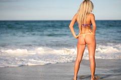 Blondes Bikinibaumuster auf Strand Stockfoto