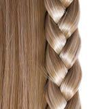 Blondes gerades Haar und Zopf oder Zopf lokalisiert Lizenzfreies Stockbild