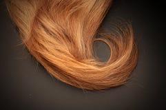 Blondes Haar Stockfoto