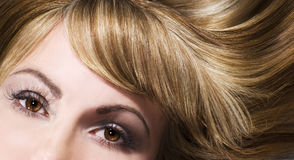 Blondes Haar Stockbild