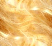 Blondes Haar Beschaffenheit des blonden Haares Lizenzfreies Stockfoto