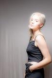 Blondes Haar-blaue Augen-amerikanische Frau Stockfotos